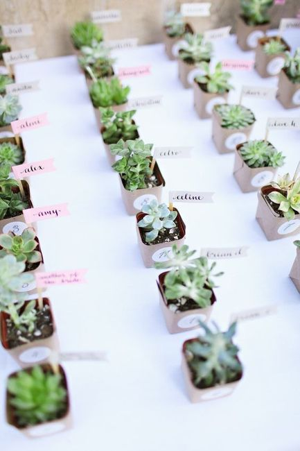 Help! Are you doing wedding favours?? 4