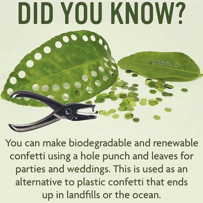 Biodegradable Confetti 1
