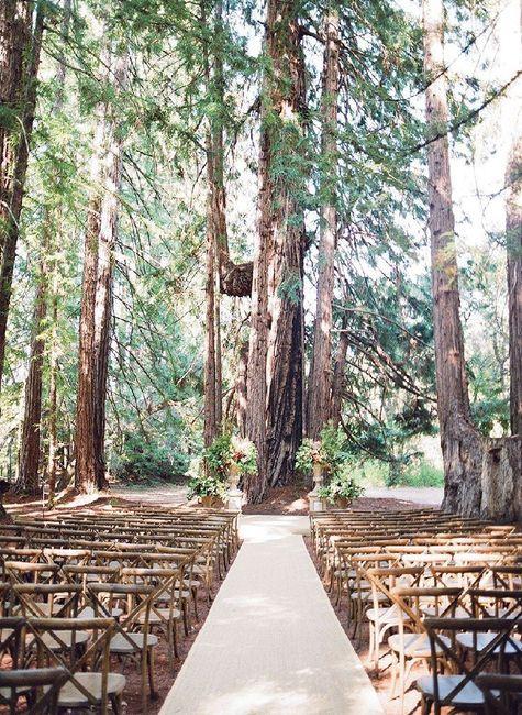 Diy Outdoor Wedding Ceremony