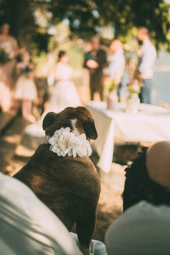 Fern at the wedding