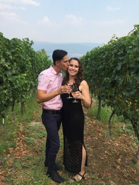 Congratulate the winners of the 32nd edition of the WeddingWire contest! 4