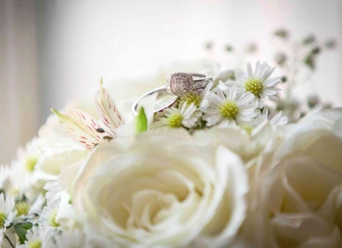 Costco Flowers! 4