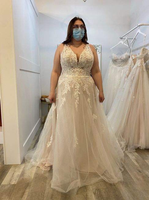 Ladies only please ☺️ Dress Shopping when you're not a standard size 4