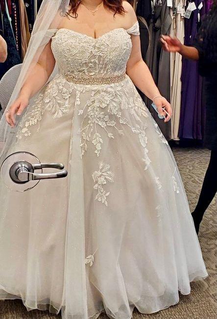 Dilemma between Wedding Dresses 1