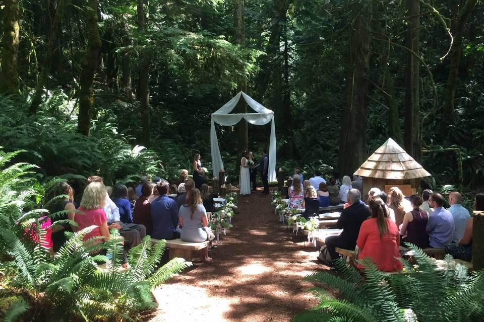 Cedar Haven Weddings